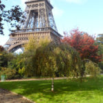 UN AUTOMNE A PARIS