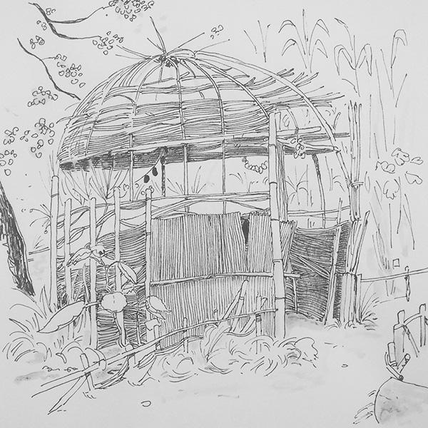 dessin cabane jardin plantes