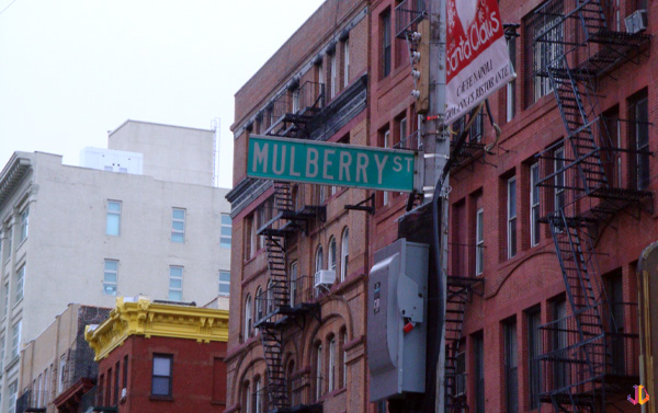 mulberry street little italy