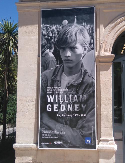 exposition william gedney